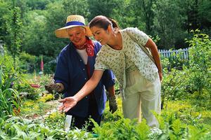 Hvordan til at planlægge en Herb Garden