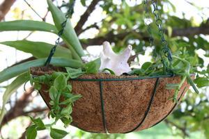 Måder at hænge planter fra dæk skinner