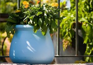 Ideer til Plantning Outdoor Urtepotter