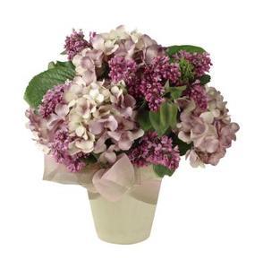 Er Hot Water metode der anvendes til hortensia også nyttigt for andre blomster?