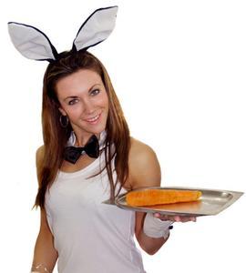 Hvordan man laver en Playboy Bunny Outfit
