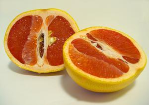 Hvordan at vokse en grapefrugt træ fra frø