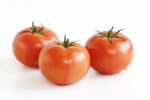Sådan Grow hydroponiske Tomater at Home