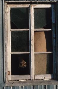 Kreative måder at bruge gamle vinduer