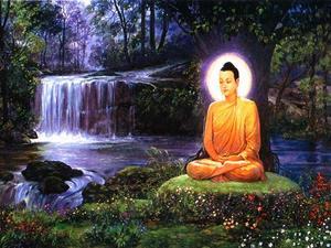 Sådan Practice Buddhist Compassion