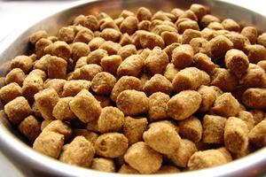 Liste over sund hund Foods