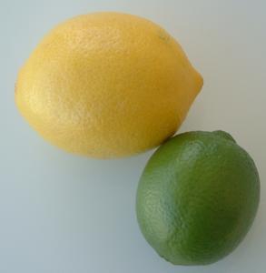 Hvordan man laver en Citrus Wreath