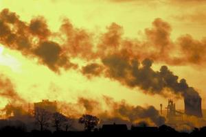 Virkningerne af luftforurening på dyr for børn