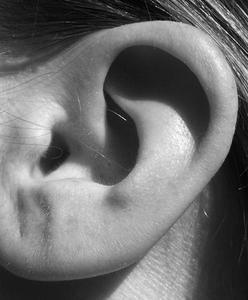 Menneskelige øre parasitter forårsager smerte