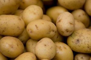 Lav stivelse kartoffelsorter