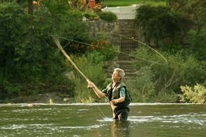Sådan at kaste en fiskestang