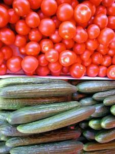 Hvordan man laver en Trellis for tomater & Agurker