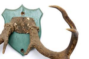 Vejledning i fremstilling af Deer Antler Lamper