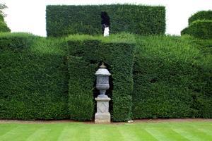 Sådan udfylder en Dead Yew Hedge