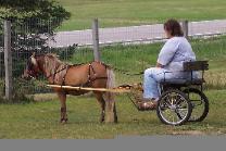 Byggeplaner for hestevogne