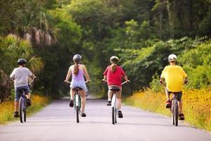 Billigste Cykel Trailers