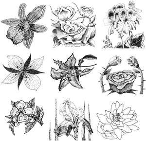Sådan Shade & Shadow en Rose Flower Tegning