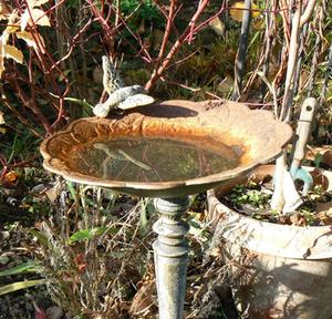 Vand funktioner til en baggård