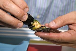 Liste over fødevarer, der indeholder store mængder af nikkel