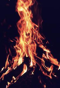 Kan du brænde Willow Brænde?