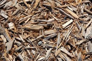 Hvordan til at sammenligne fyrrebark & cedertræ barkflis