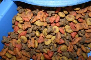 Sådan Store Dry Cat Food
