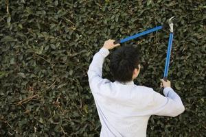 Bush & beskæring af træer Værktøj