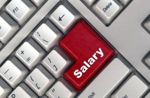 Hvad betyder DOE Mean i løn-?