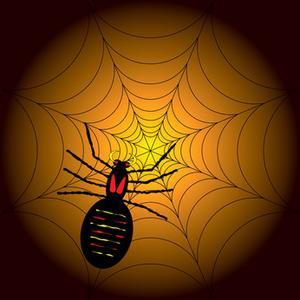 Hvordan laver Big, Falske Spiders til Halloween Dekorationer