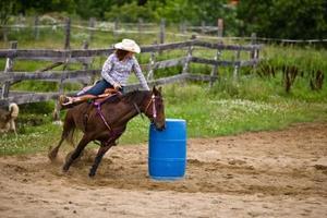 Hvordan laver Liniment for en hest