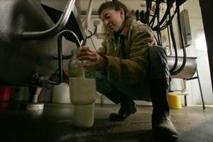 Sådan køber rå mælk