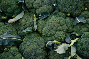 Hvad Insect Spray bruger jeg for Broccoli?