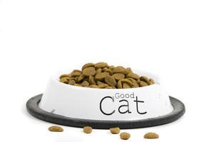Sådan Sammenlign Dry Cat Food Ingredients
