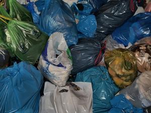 Sådan laver du en pung af genbrugte indkøbsposer