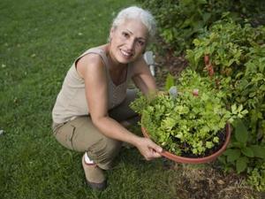 Cute ideer til potteplanter urtehaver